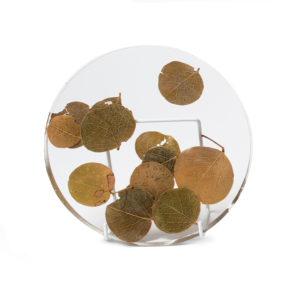 Moeda Plant Plate