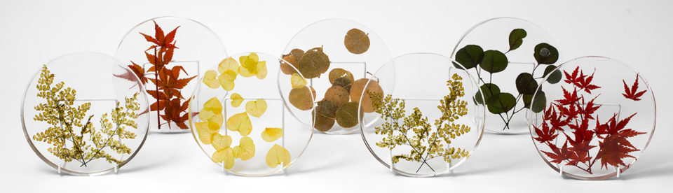 Floral Plates by Tessa Packard London Contemporary fine Jewellery